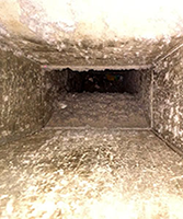 Let us clean your air ducts for a better environment for your family!